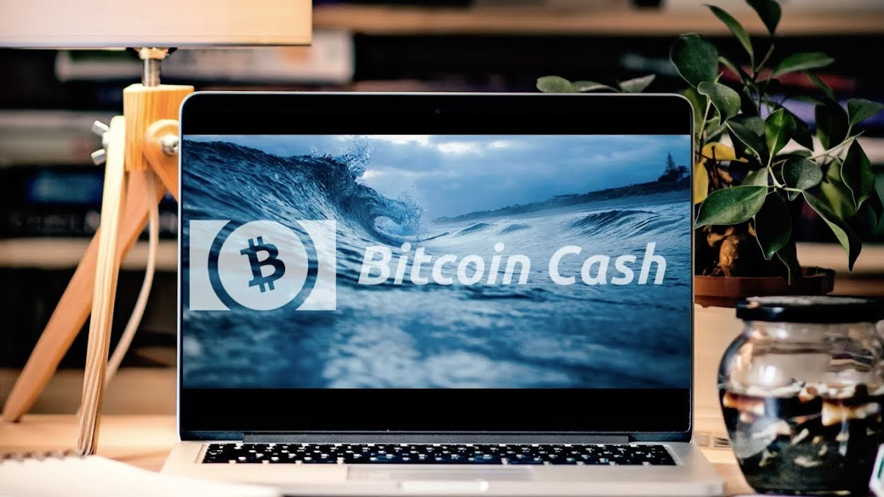 Crypto bot - valódi profit ma