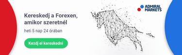 bináris opciók útmutató kereskedők számára internetes bevételek a pénzügyi piacon