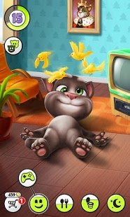 hogyan lehet pénzt keresni tom macskában