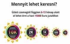 jövedelem üzleti profit internet