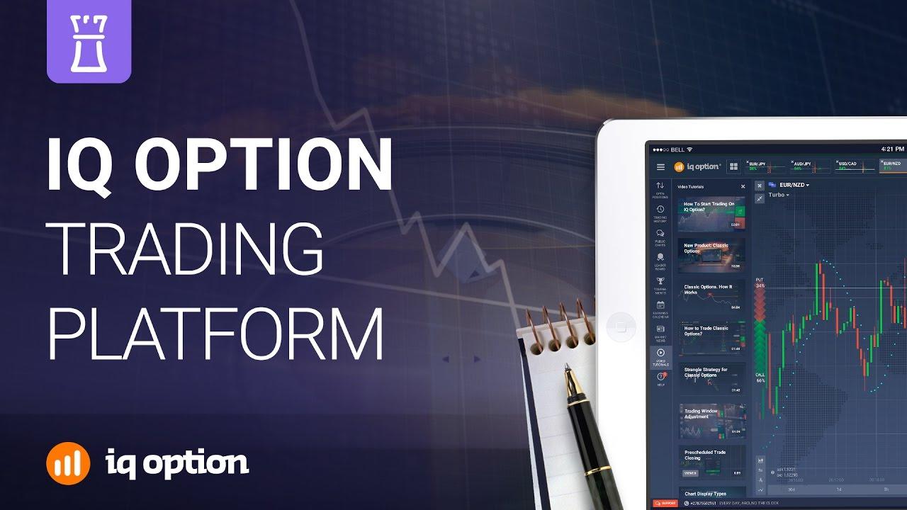 iq opció bináris opciós kereskedési platform